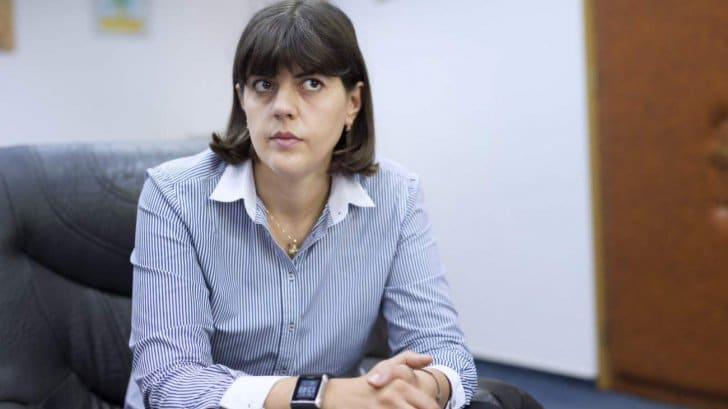 Лаура ковеши она сажала по одному коррупционеру в день 25