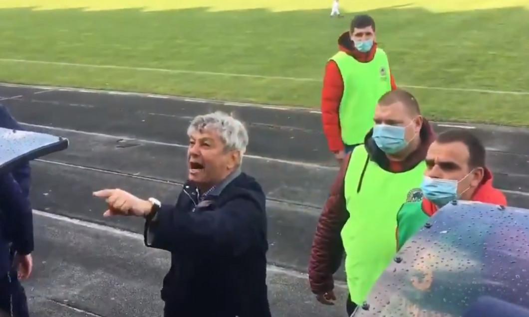 Fanii lui Dinamo