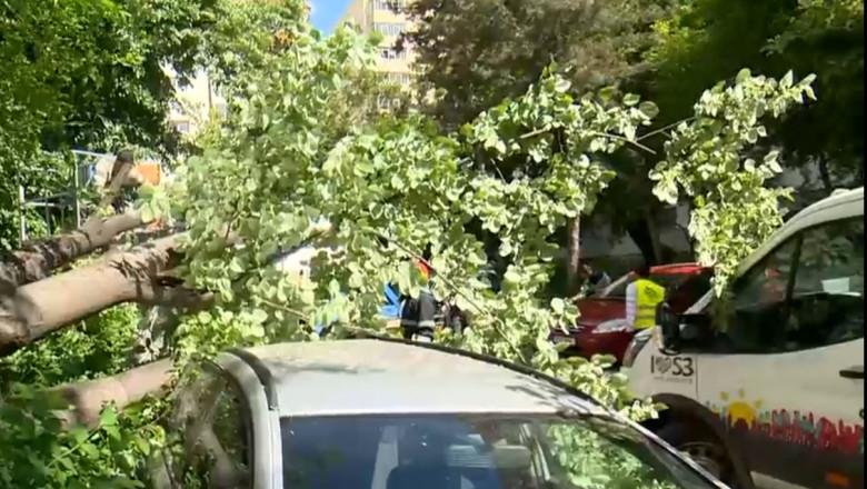 Vântul puternic a produs distrugeri în Capitală