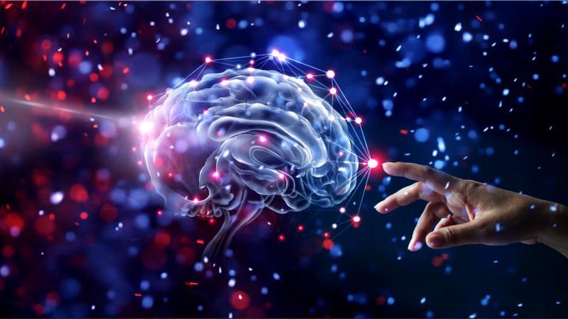 O boală cerebrală misterioasă a pus pe jar Canada