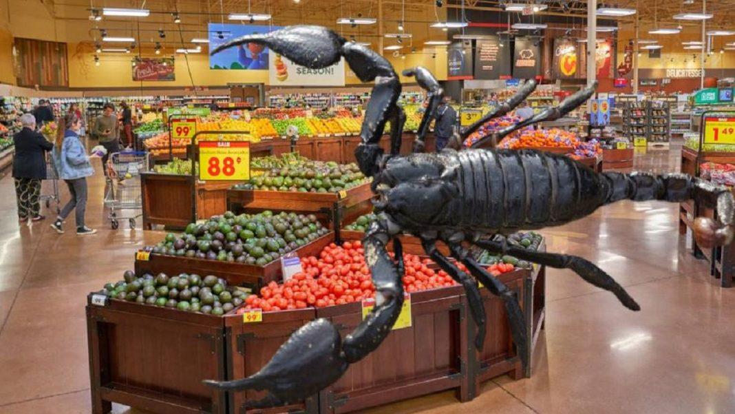 Angajata unui supermarket, mușcată de un scorpion aflat în cutia cu căpșuni