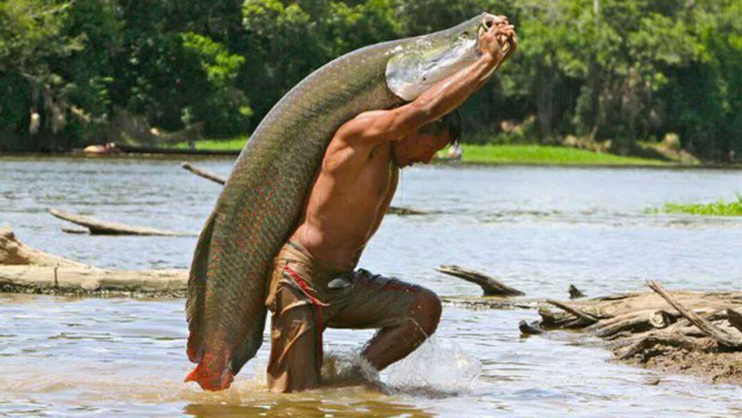 Peştele