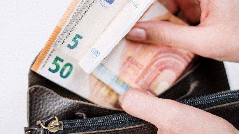 Germania oferă 1200 euro lunar unor voluntari care nu trebuie să facă... nimic