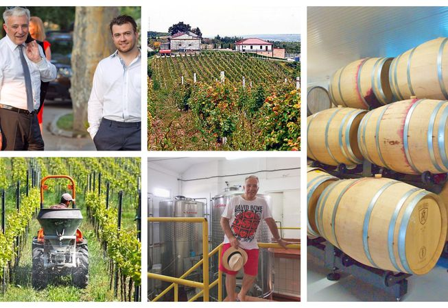 Casa de vinuri